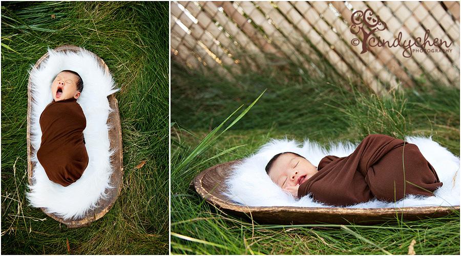newborn baby in nature